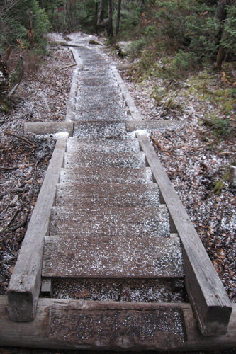 wooden stairs on the Osseo Trail, Mount Flume, NH