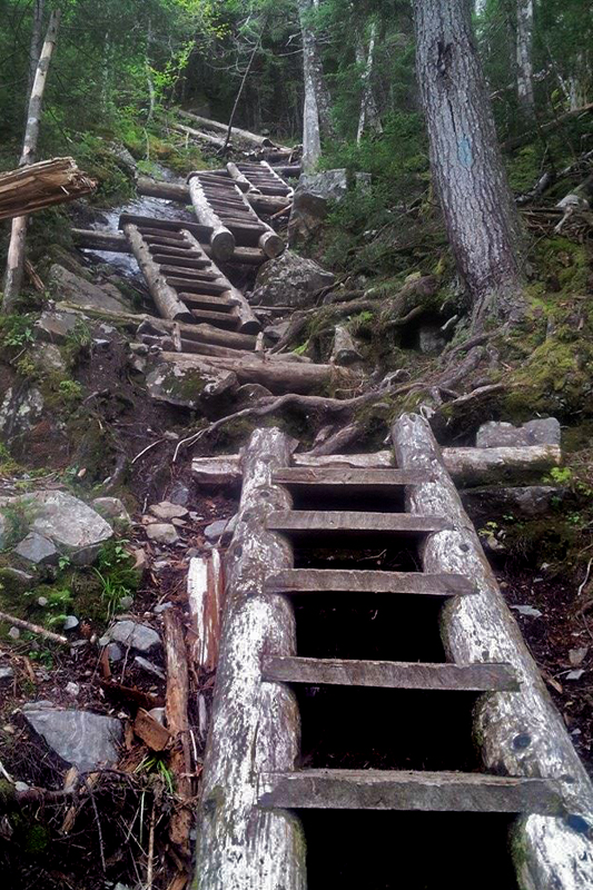 ladders on the Willey Range Trail, Mt. Willey, NH