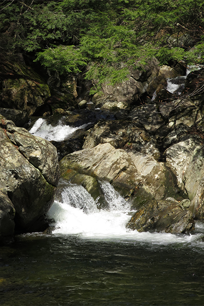 Cascades On Dunbar Brook, Massachusetts