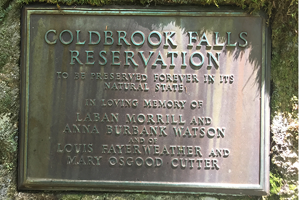Cold Brook Falls