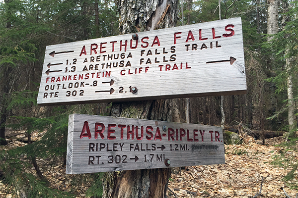trail sign between Arethusa Falls and Ripley Falls