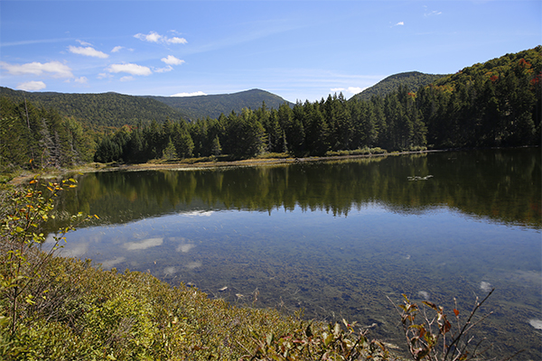 Ammonoosuc Lake, New Hampshire