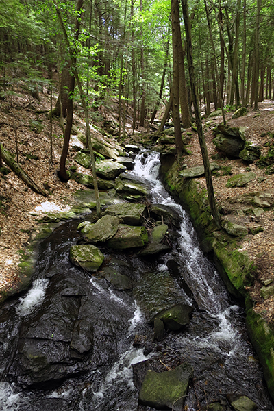 Chesterfield Gorge, New Hampshire