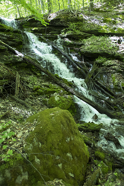 Cascades At The Equinox Preserve, Vermont