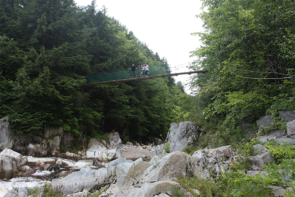 the swinging bridge above Clarendon Gorge-Upper Falls, Vermont