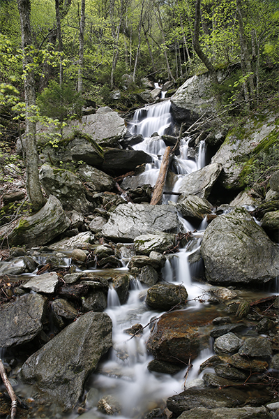 Hell Brook Cascades, Vermont