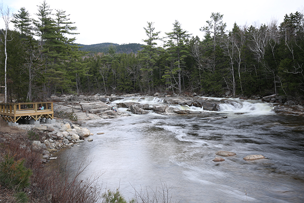 Lower Falls (Albany) (Best Swimming Holes in New England)