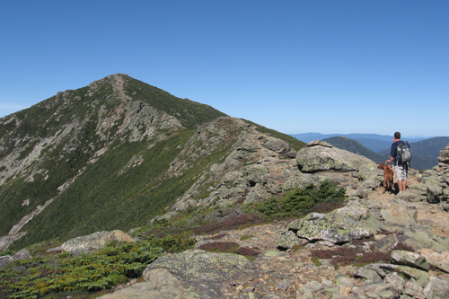 Franconia Ridge Trail looking towards Mt. Lincoln