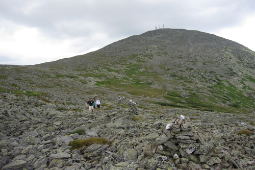 alpine zone of Mt. Washington