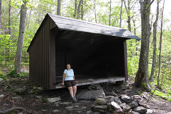 shelter near Falls on Pecks Brook, Massachusetts